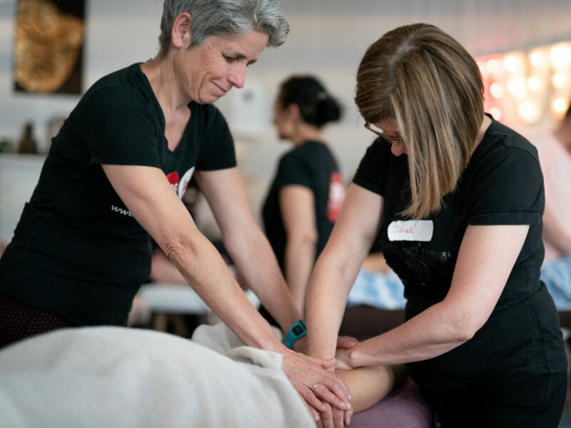 BTEC Level 6 Year One: ACMT (Advanced Clinical Massage Therapist)